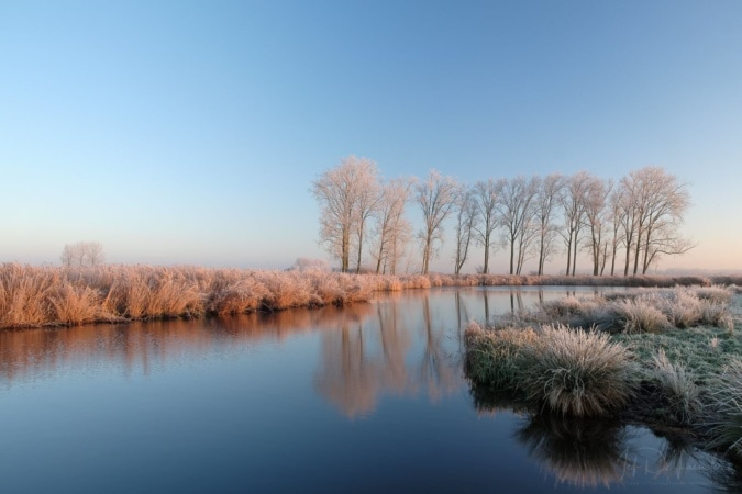 Frost reflections