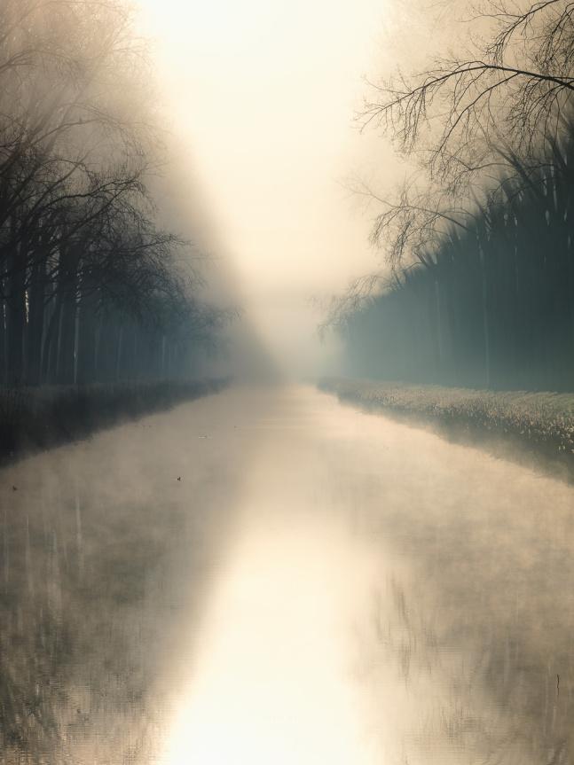 damme, mist, winter